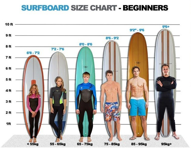 Surfboard Size for beginners