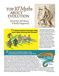 Top 10 Myths About Evolution (page 1)