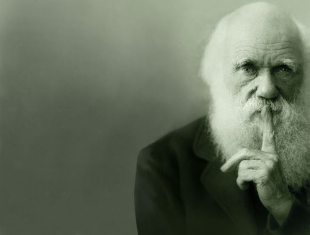 Darwinism dating