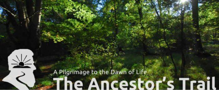 Ancestor_s_Trail