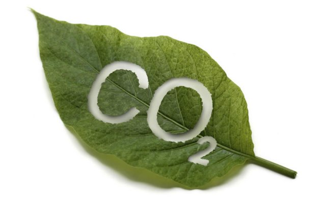 Lamar Smith believe more CO2 is good for the planet