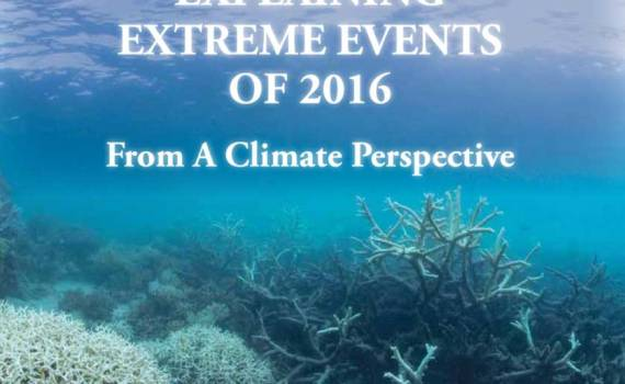 extreme weather 2016