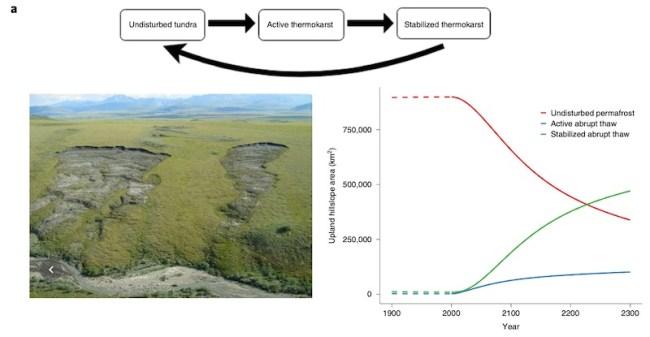 Permafrost model a