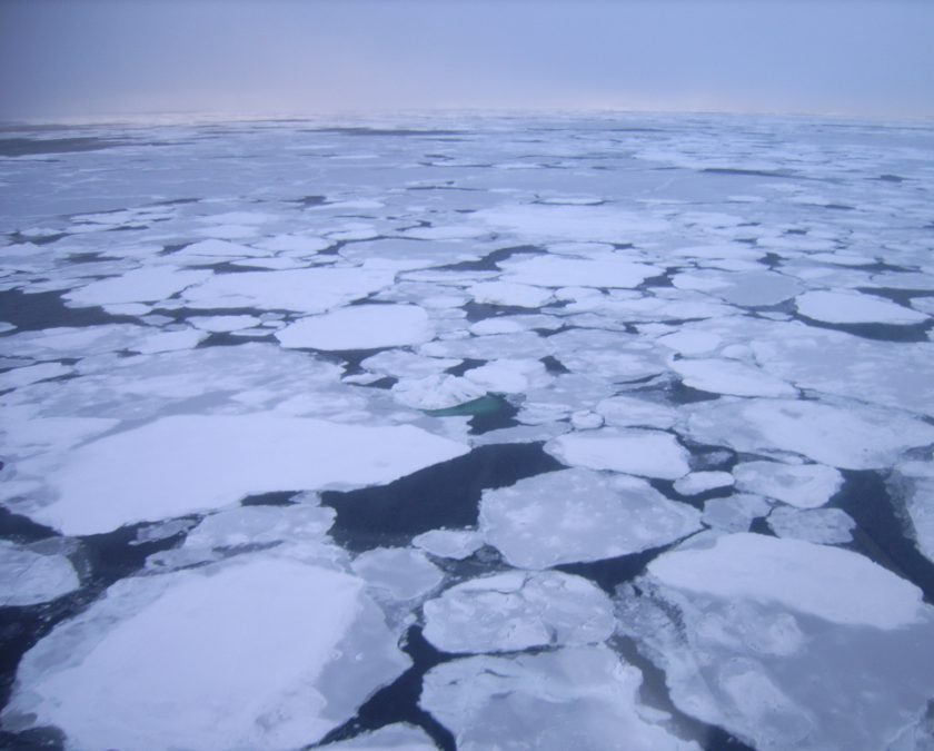 Laptev Sea Ice in the Arctic