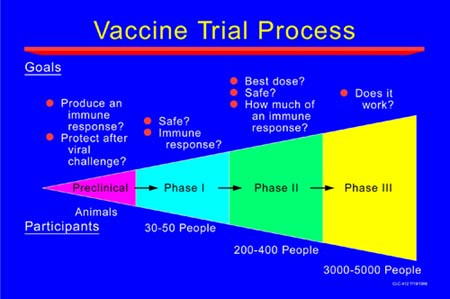 The actual process for vaccine clinical trials.
