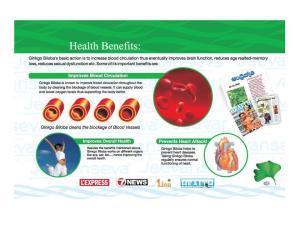 ginkgo-health-benefits-bullshit