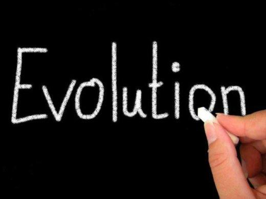 evolution-chalkboard