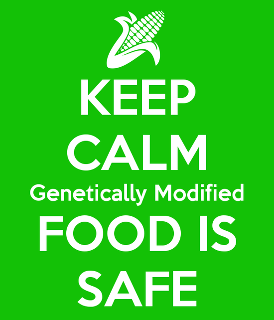 are genetically modified foods safe to eat essay Mandatory labels for genetically modified foods are a bad idea have been eating plants in which scientists agree that gmos are just as safe as other foods.
