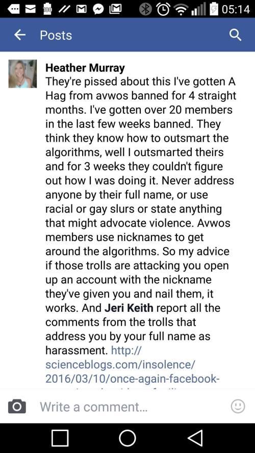 Racist Facebook troll