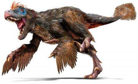 website velociraptor