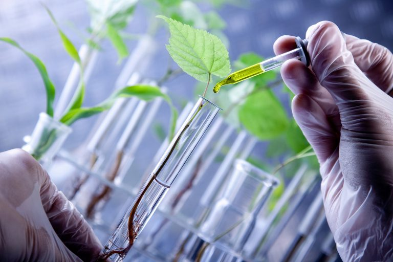 GMO science