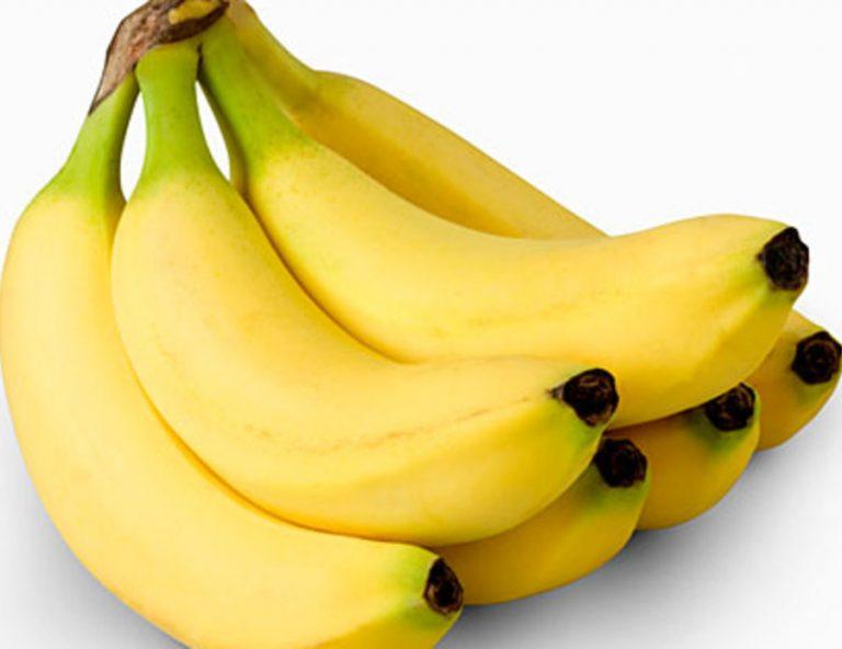 GMO bananas