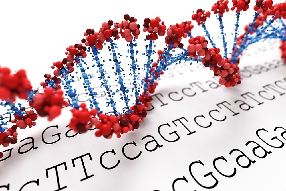 DNA in vaccines