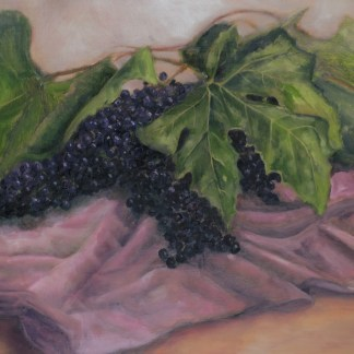 Purple grapes | Damian Osborne
