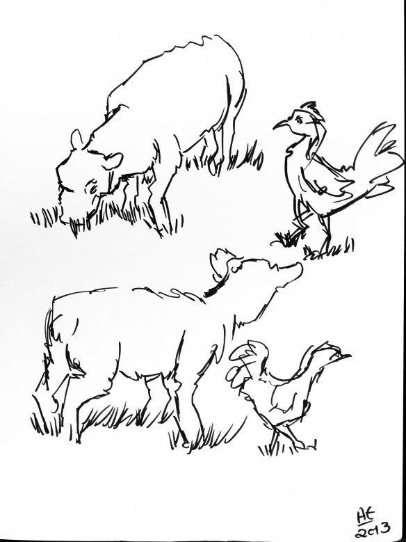 Sheep and Chicken Studies