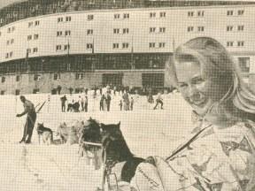 Hotel Portillo dog sled