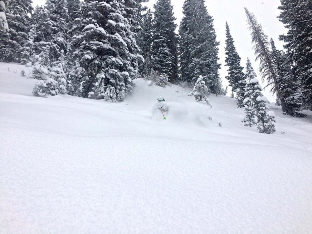 Alta snow storm, how much snow did Alta get?