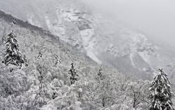 Stowe reported a 25-inch storm total this morning | Photo: Stowe Mountain Resort, Dec. 12, 2014
