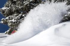 Vail saw 38 inches of fresh snow in the last seven days. | Photo: Danbiel Milchev/Vail Resorts