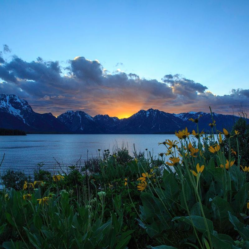 Jackson Hole summer, summer in Jackson Hole