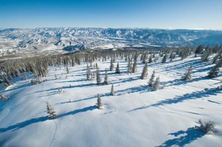 Big Burn tree skiing Aspen Snowmass,