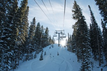 Intermediates looking to step up their game in the trees will find that Telluride has world-class, progessive glades. | Photo: Telluride Ski Resort