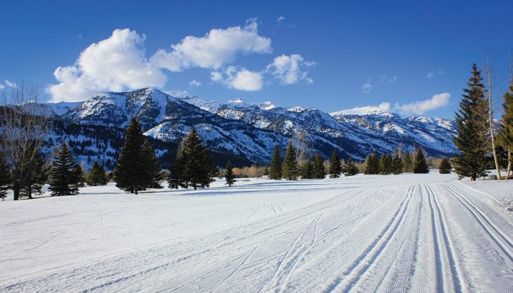 Jackson Hole cross country, Teton Pines Nordic