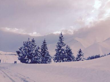 snowfall Las Lenas