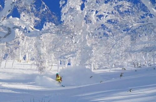 snowsurfing Japan, snowsurf Hokkaido
