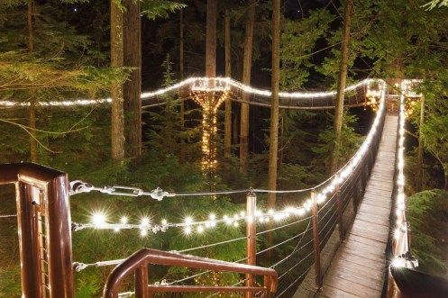 Canyon Lights Treetops Adventure at Capilano Suspension Bridge Park