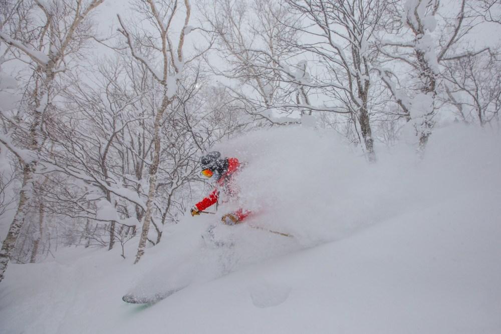 niseko skiing, niseko snow