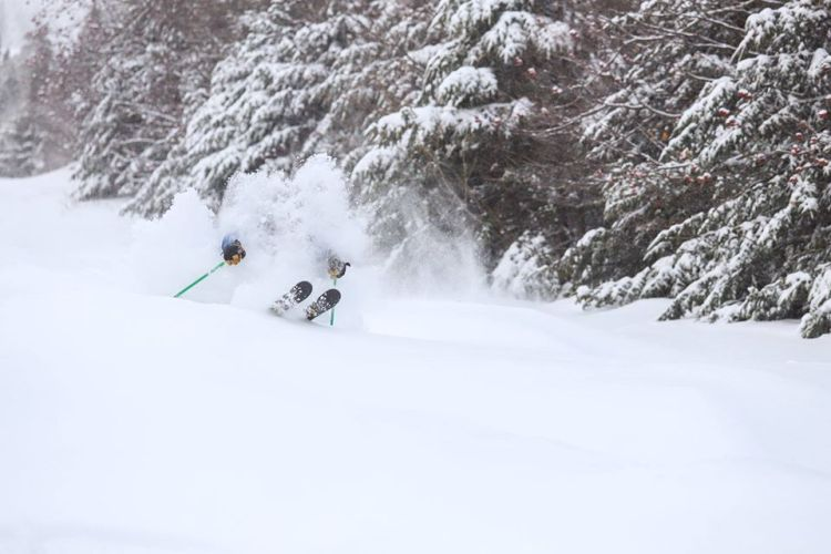 snow, totals, report, conditions