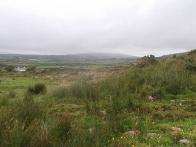 Skibbereen-Animal-Sanctuary-and-Rescue-Centre (18)
