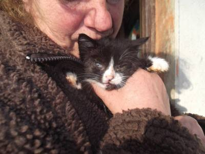 Skibbereen-Animal-Sanctuary-and-Rescue-Centre (358)