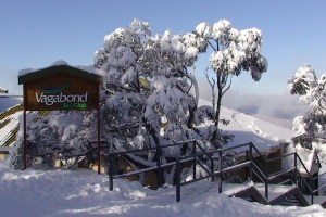 hotham accommodation