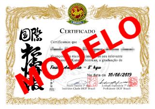 Diploma de kyu
