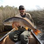 Gorgeous South Carolina Redfish on Fly