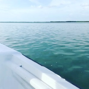 Perfect day on the water.            …