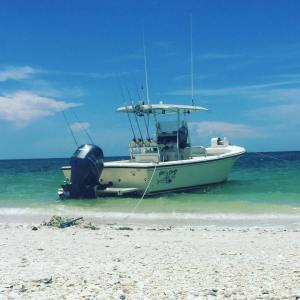 This boat catches fish… and shells             …