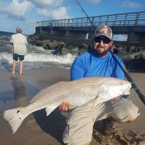 I went on a trip to sebastian and had a blast! Hooked on this bull red! What a f…