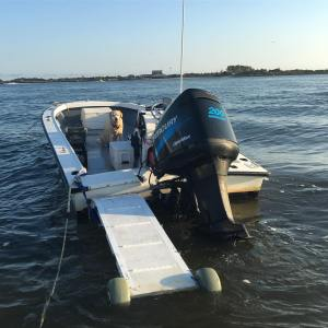 The ramp makes the boat accessible to the dogs anytime  lab   …