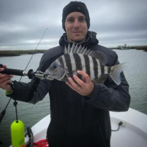 15 inch sheepshead! Water is getting cold!  …