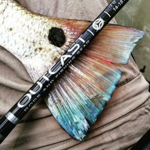 fishing rods made with premium rod components perfect for the serious saltwater…