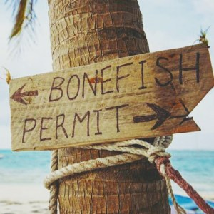 Hey guys! Which direction you going?? Bonefish or Permit? – –   …