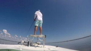 Whack! Who else loves sightfishing?