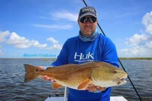 from  –  Another beautiful just over slot redfish caught on fly!               …
