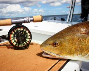 Friday is finally here! It's time to pull out the fly rods and go get some redfi…