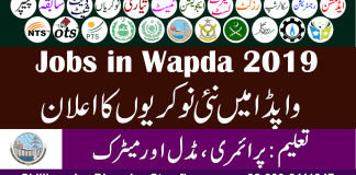 Water And Power Development Authority (WAPDA) (25-8-2019) Wapda Jobs 2019