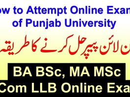 Download Roll No Slip for BA BSc Associate Degree Part II Annual Examination 2020