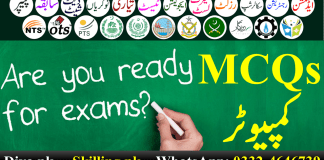 Download Important Solved Computer MCQS PPSC FPSC OTS PTS NTS